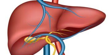 Cosa comporta un fegato disfunzionale?